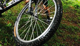 Mountain Bike e Downhill